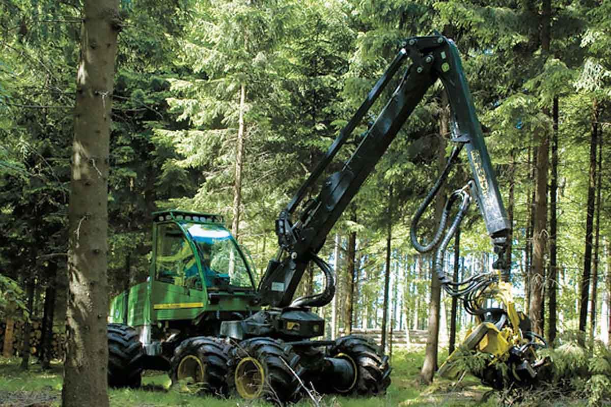 Forstservice Harvester Sporrer Holz