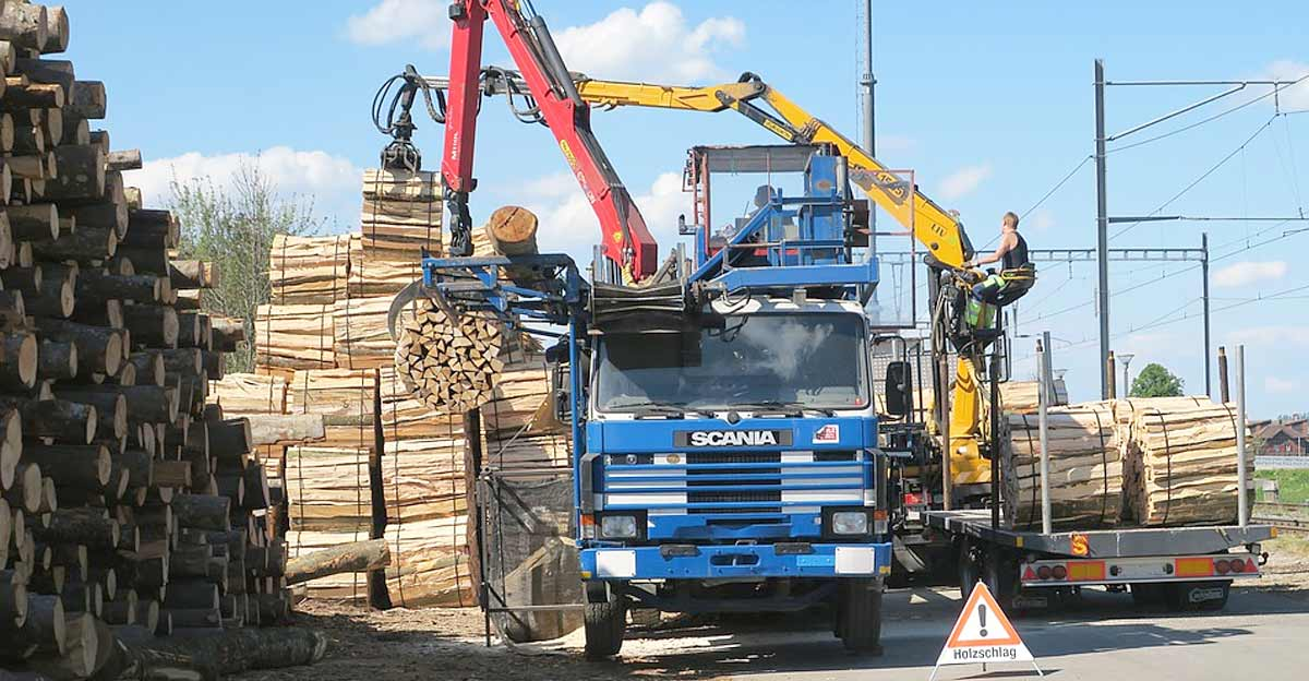 Die Logistik nach der Holzernte