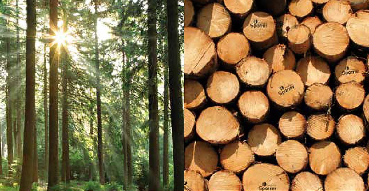 Sporrer Holzgruppe